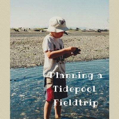 VISITING TIDEPOOLS