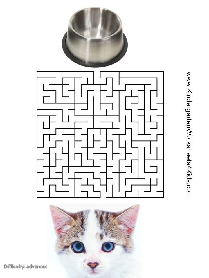 Cat Mazes