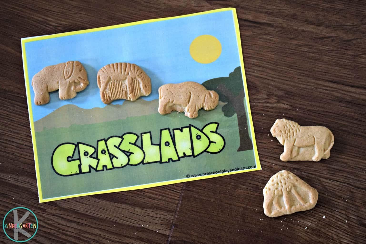 Animal Habitats Activity With Animal Cookies