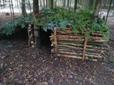 kinder survival wald