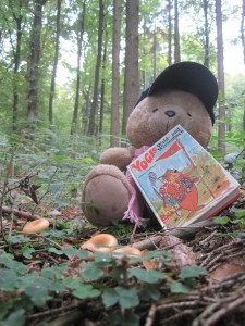 Gut gerüstet startet Bärli in Serfaus-Fiss-Ladis in den Bären Caching Parcours. Immer in der Hoffnung, dort Süßigkeiten zu finden. Foto: (c) Kinderoutdoor.de