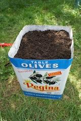 Upcycling tut der Erde gut. In unserem Fall der Blumenerde. Foto (c) Kinderoutdoor.de