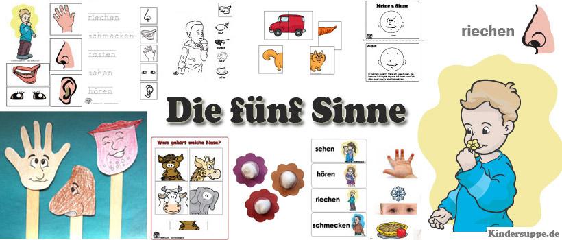 Projekt Die Fuenf Sinne Kindergarten Und Kita Ideen