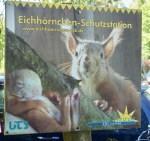 Eichhörnchenschutzstation Eckernförde