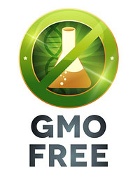 GMO Free Organic Ingredients