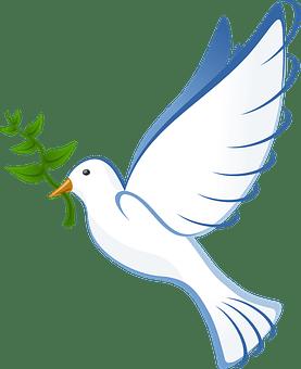 DANGER TO BIRDS