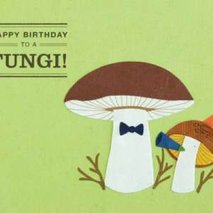CARD BIRTHDAY FUNGI