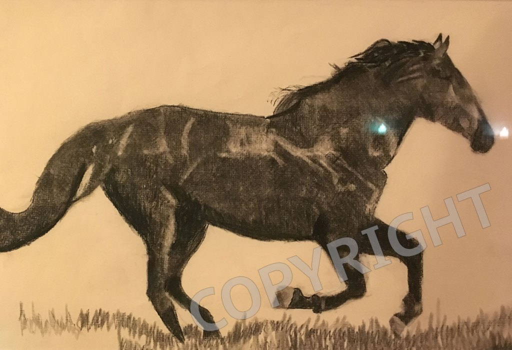 horse-william-forth-charcoal-copy1200