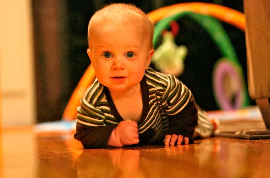 Tercer Trimestre: 7 a 9 meses. SEDESTA, Reacciones de apoyo Positivas y Gateo