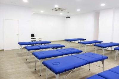 aula1 - escuela oficial de kinesiologia holistica