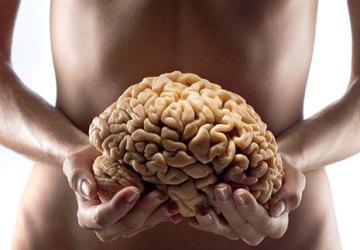 secondo cervello