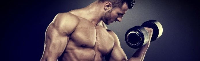 weight-training-program