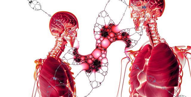 Quais são as doenças autoimunes?