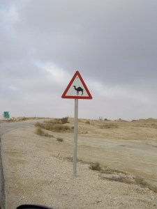 An Israeli traffic sign you probably won't find in the US!
