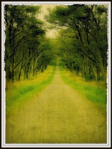 Christ: The narrow road to true life