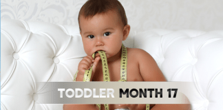 Toddler Month By Month - Month 17