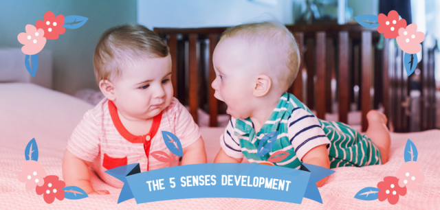 The_5_Senses_Development