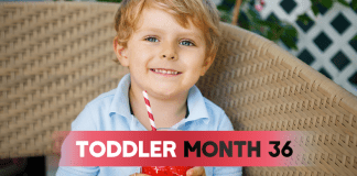 Toddler - Month 36