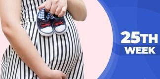 Pregnancy weeks 25