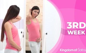 pregnancy week 3