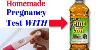 Pine-Sol Pregnancy Kit Guide: Testing Positive, How to use it, Risks and more!