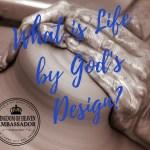 God's design