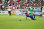 Al Ahli, AFC Champions League