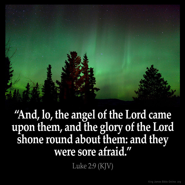 Image result for luke 2;9