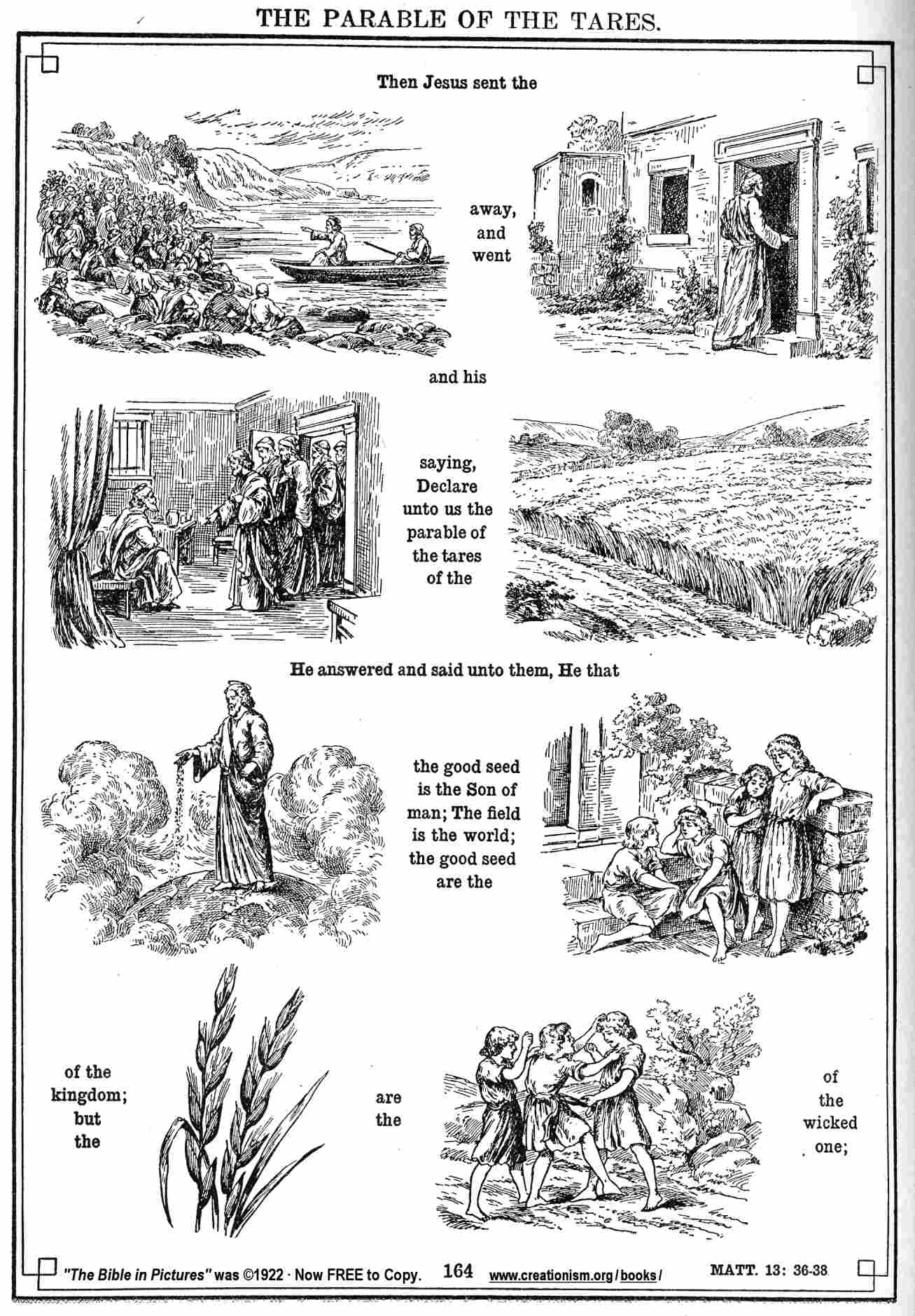 Cut And Paste Parable Of The Wheat And Tares