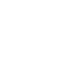 kingllavero_logo_vw