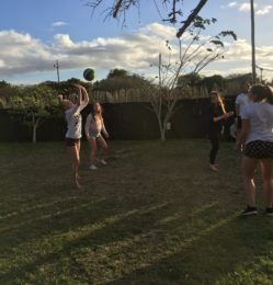 Grass – volleyball – July