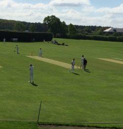 Cricket Match