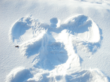 #ygkChallenge: Be a Snow Angel – Kingston News