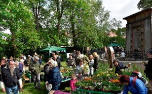 Plant Sale St Margarets Richmond