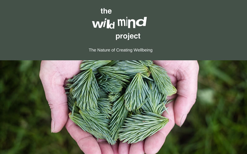 The Wild Mind Project Kingston upon thames