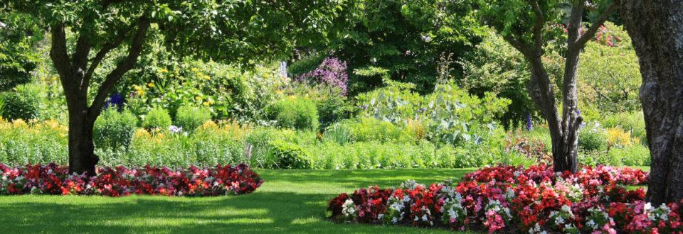 kingwood garden center