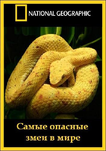 Самые опасные змеи в мире фильм 2010 года