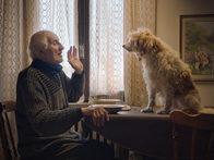 «Охотники за трюфелями»: Очаровательное и мудрое кино про стариков, собак и грибы