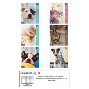 QUADERNO A4 MAXI SEVEN 96/100 ANIMAL Q   6 SOGGETTI ASSORTITI