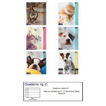 QUADERNO A4 MAXI SEVEN 96/100 ANIMAL C   6 ASSORTIMENTI