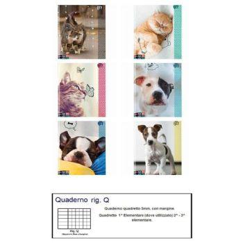 QUADERNO A4 MAXI SEVEN 96/100 ANIMAL _Q  6 ASSORTIMENTI