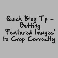 Quick Blog Tip - Getting 'Featured Images' to Crop Correctly