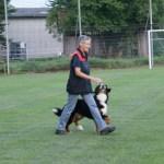 Sporthund-BH