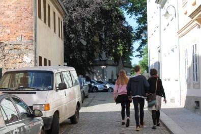 Orgel Halb Marathon Oberlausitz 2018 - 2