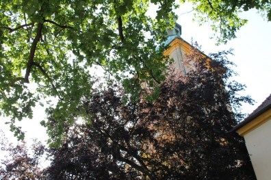 Orgel Halb Marathon Oberlausitz 2018 - 4