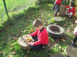 autumn leaves 006