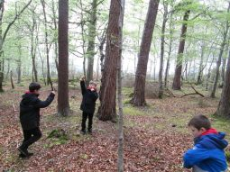 outdoor learning in the woods 049