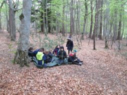 outdoor learning in the woods 055