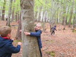 outdoor learning in the woods 061