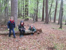 outdoor learning in the woods 062